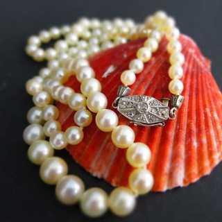 Beautiful akoya pearl necklace with platinum clasp vintage ladys jewelry